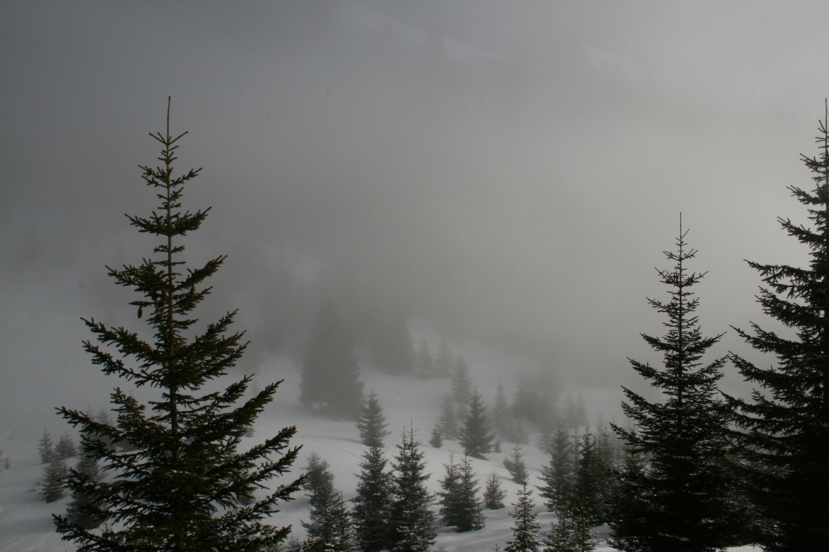 http://buettnerdavid.de/4_Tyrol-Austria%20Winter/2_Fog/13_and%20even%20more%20fog%20coming.jpg
